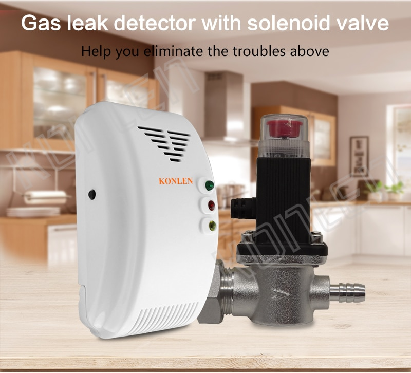 Gas detector with Solenoid valve for home cylinder  03