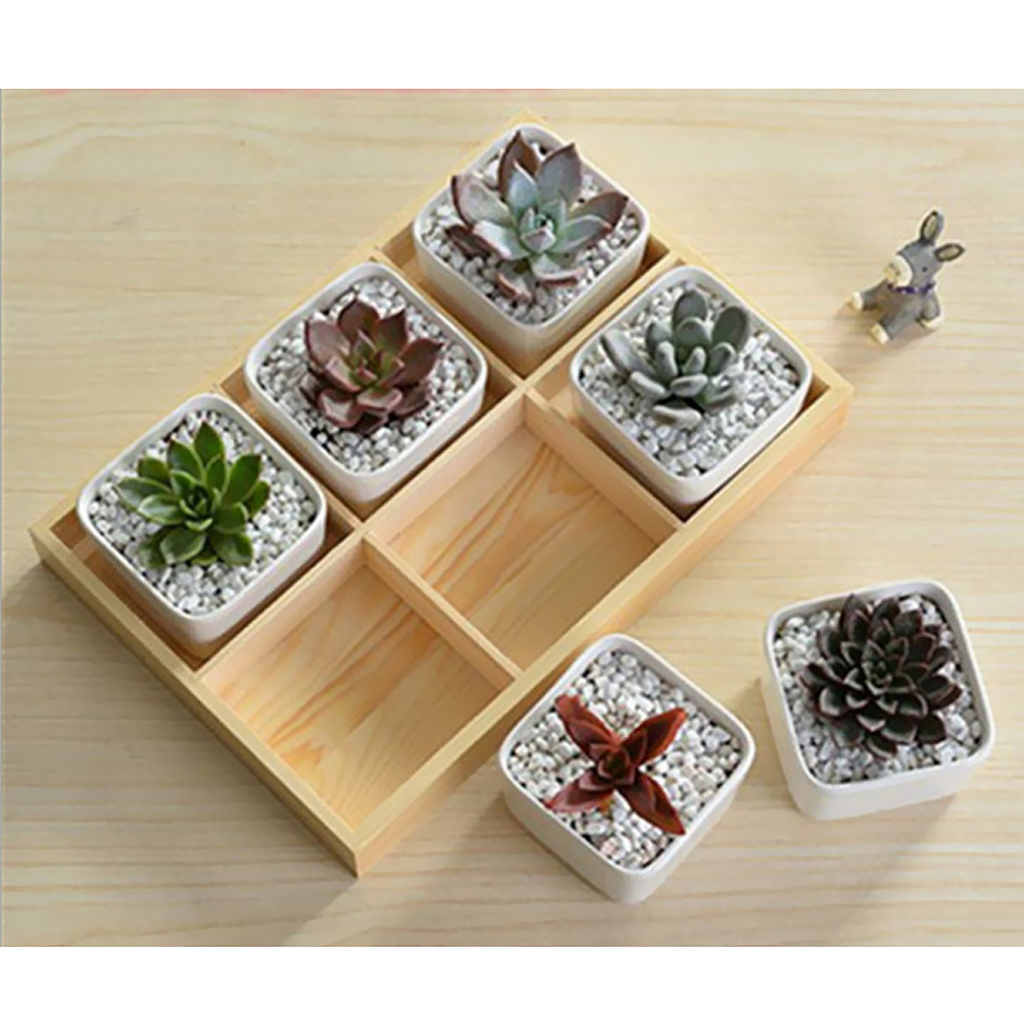 Natural Wooden Succulent Plant Flower Bed Pot Through Box Garden Planter