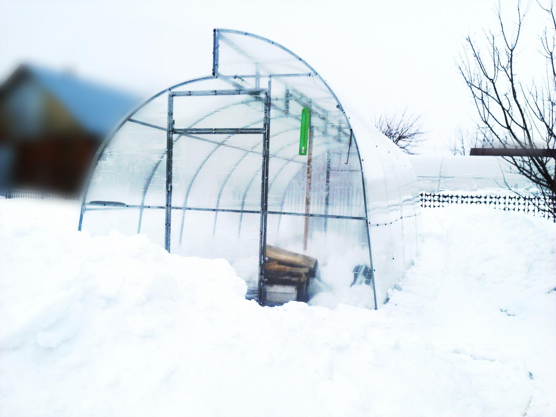 почему в теплицу надо накидывать снег